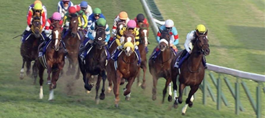 競馬 ワイド 回収率